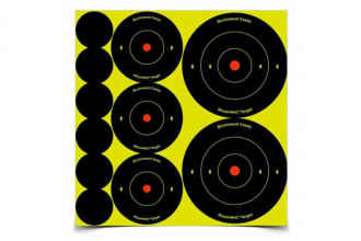 Birchwood Casey-Shoot-N-C Targets Mixed 1