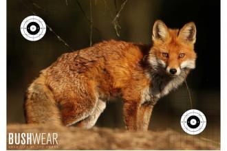 BushWear-Fox Life Size Targets