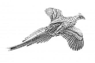Pewter Pin-No 1: Small Pheasant