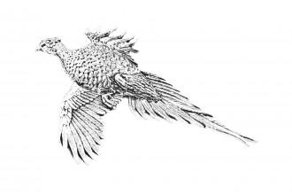 Pewter Pin-No 2: Large Pheasant