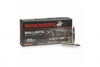 Winchester-.243 Ballistic Silvertip 95 Grain